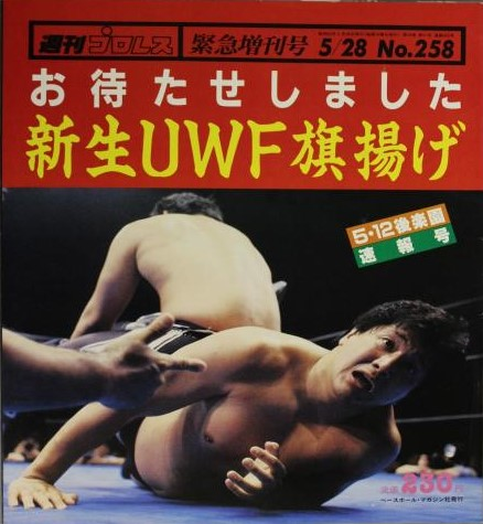 Weekly Pro Wrestling No. 258