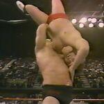 1.16.88 WWF Superstars.00007.jpg