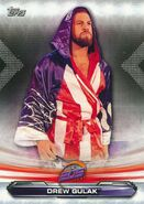 2019 WWE Raw Wrestling Cards (Topps) Drew Gulak 79