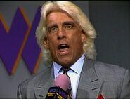 February 23, 1993 WCW Saturday Night 12