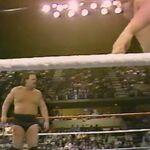1.16.88 WWF Superstars.00012.jpg