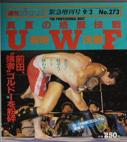 Weekly Pro Wrestling No. 273