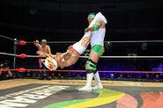 CMLL Domingos Arena Mexico (January 13, 2019) 1