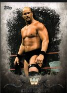 2016 Topps WWE Undisputed Wrestling Cards Stone Cold Steve Austin 92