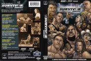 Survivor Series 2004 DVD