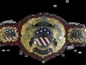 Iwgp us championship A.png