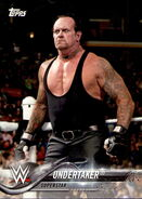 2018 WWE Wrestling Cards (Topps) Undertaker 96