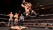 NXT 294 Photo 08