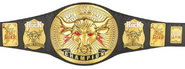 The Rock's Brahma Bull Championship (Unused)