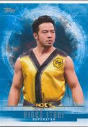 2017 WWE Undisputed Wrestling Cards (Topps) Hideo Itami 47