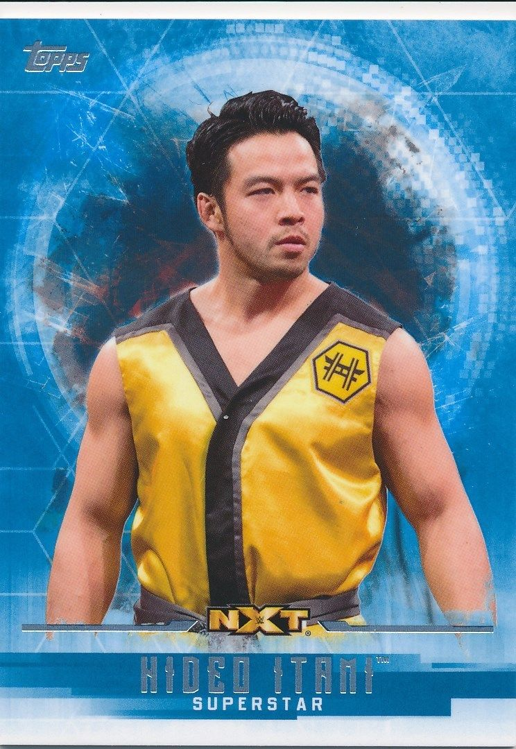 2017 WWE Undisputed Wrestling Cards (Topps) Hideo Itami (No.47)