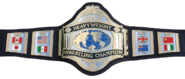 Hogan86belt
