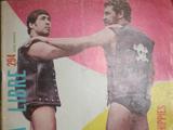 Lucha Libre 294