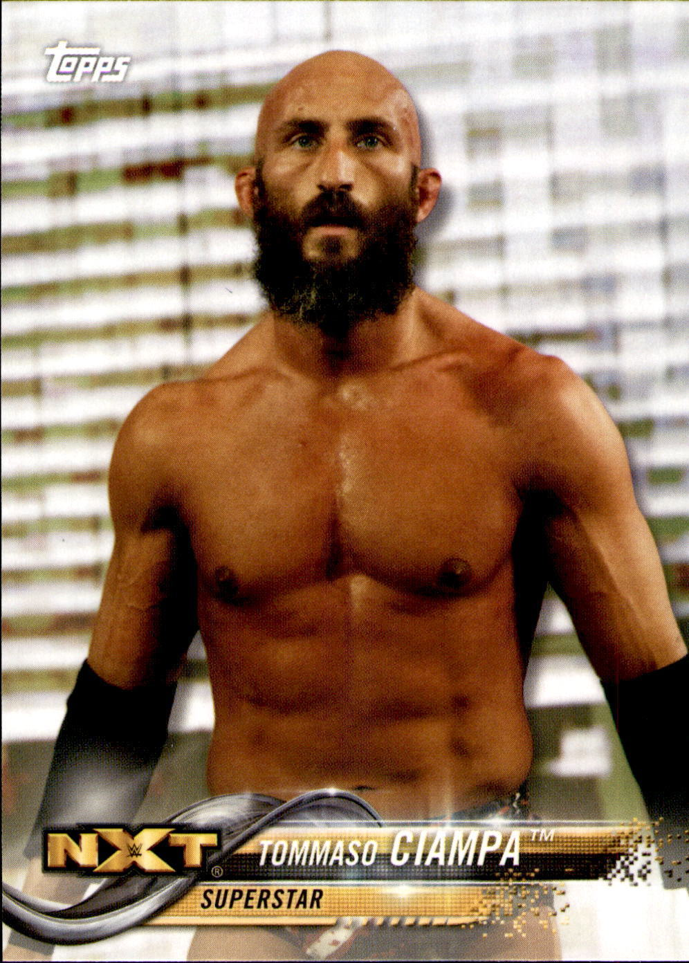 2018 WWE Wrestling Cards (Topps) Tommaso Ciampa (No.91)