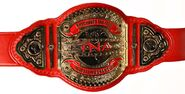TNA Knockout Tagg Team Championship
