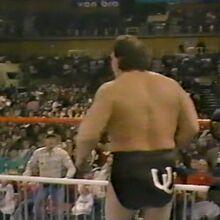 1.16.88 WWF Superstars.00010.jpg