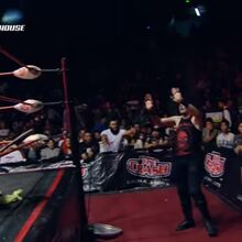 MLW Fusion 80 20.jpg