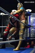 CMLL Lunes Arena Puebla 5-1-17 9