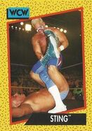 1991 WCW (Impel) Sting 11