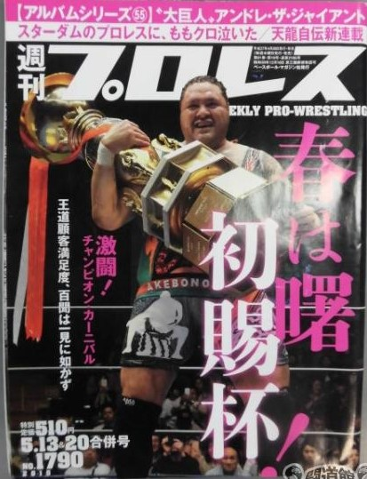 Weekly Pro Wrestling No. 1790