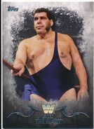 2016 Topps WWE Undisputed Wrestling Cards Andre The Giant 42