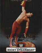 2010 WWE Platinum Trading Cards Ricky The Dragon Steamboat 17