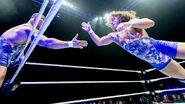 WWE Live Tour 2017 - Bournemouth 5