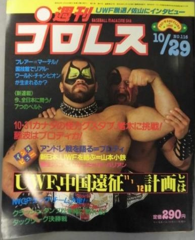 Weekly Pro Wrestling No. 116