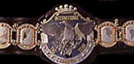 AJPW Unified World Tag Team Championship.jpg