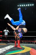CMLL Martes Arena Mexico (January 15, 2019) 22