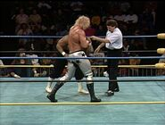 January 2, 1993 WCW Saturday Night 14
