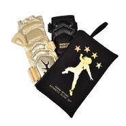 Roman Reigns Gold TV Authentic Glove & Gauntlet Set