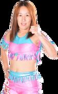 Sumie Sakai - ROH
