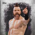 2016 Topps WWE Undisputed Wrestling Cards Sheamus 33.jpg