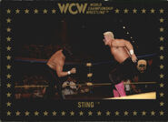 1991 WCW Collectible Trading Cards (Championship Marketing) Sting 55