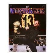 The Undertaker WrestleMania XIII Acrylic Wall Art