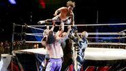 WWE WrestleMania Revenge Tour 2014 - Turin.13