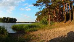 Plaża nad Zalewem Sielpia (świętokrzyskie)