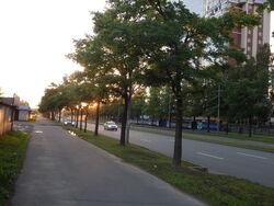 Klimat umiarkowany chłodny, białe noce w Petersburgu, Rosja, 4/07/2014, godzina 23.