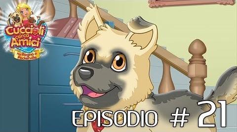 Cuccioli Cerca Amici - Ep 21 La risposta di Durillia (parte 1)