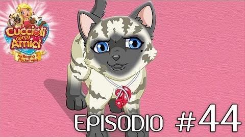 Cuccioli Cerca Amici - Ep 44 Nella tane del gatto (parte 2)
