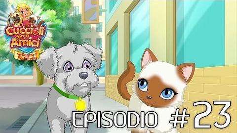 Cuccioli Cerca Amici - Ep 23 Per un pelo (parte 1)