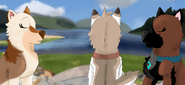 Kasha Patty and Dilara sitting on rocks in Strontian Pups go to Scotland ilustration