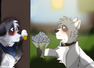 Akro gives flowers to Diana