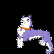 Snowy as catartophe crew kitten
