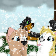 Scotty Miley Milk and Prima playing in the snow and sitting December Challenge 2 Day 3 First Snow