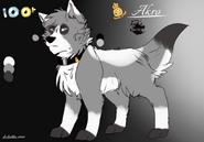 Akro character sheet