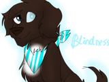 Blindess