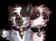 Kerra and owen