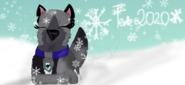 Eyra Winter holiday 2020